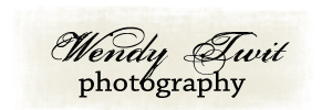 Wendy Twit Photography logo